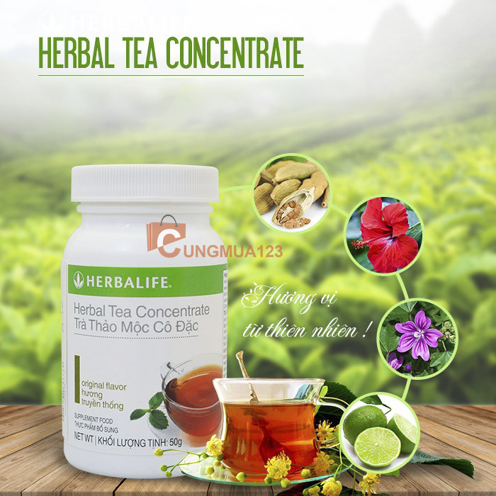 vBo-3-herbalife-giam-can-co-ban 4